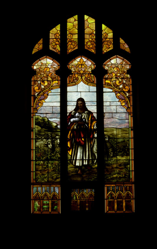 Shepherd Window