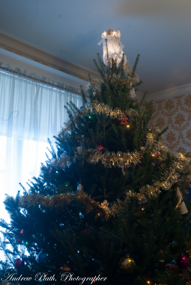 For the second year I put up a tree alone.