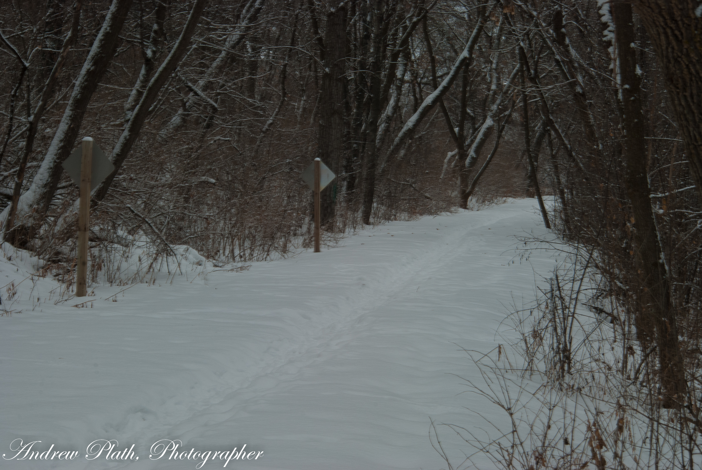 Mosinee River Trail In Winter-0209
